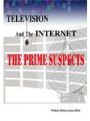 Television & the Internet the Prime Suspects
